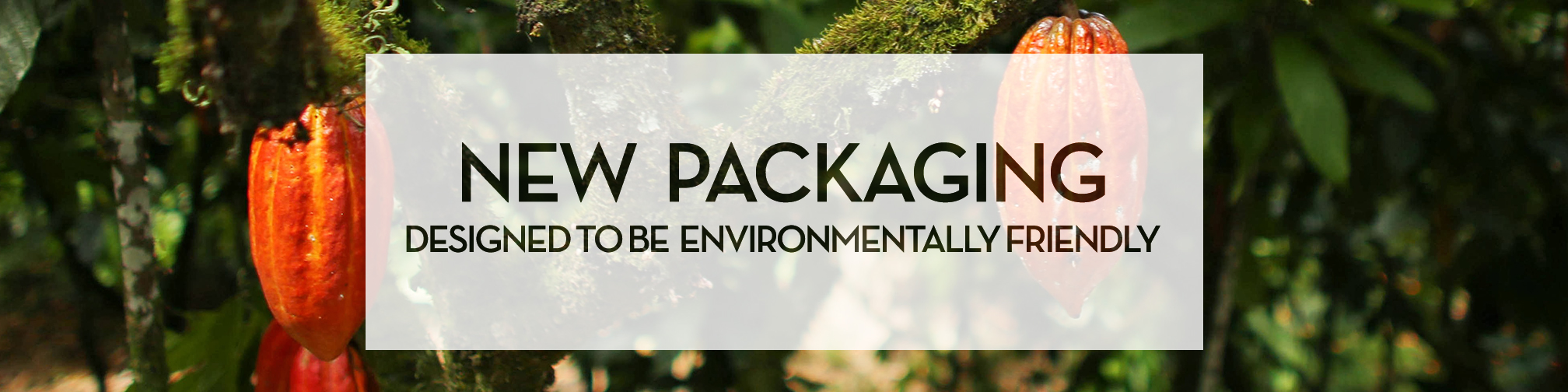 environmental packaging