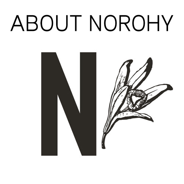 About NOROHY