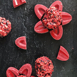 STRAWBERRY INSPIRATION ROCHERS