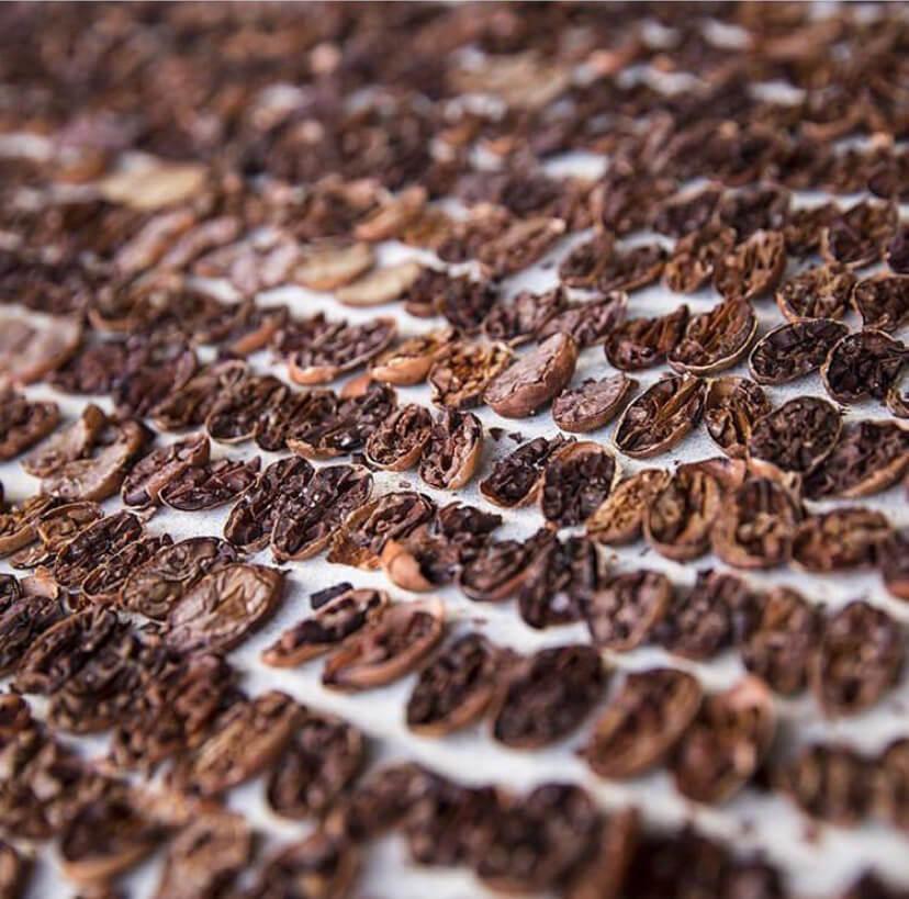 Chocolate Fun Fact: Cocoa Percentage