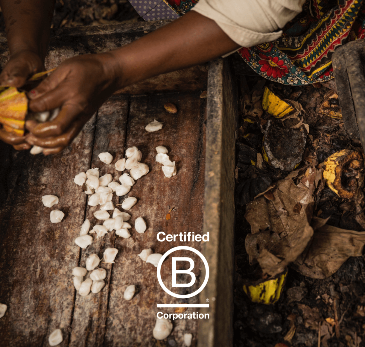 B Corp: The Future of the Cocoa Industry